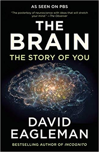 The Brain: The Story…